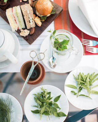 Birds-eye-view of a glass table laden with tea leaves on circular side plates