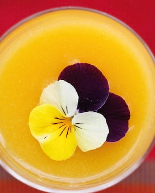 Birds-eye-view of an edible flower on top of a lemon mousse