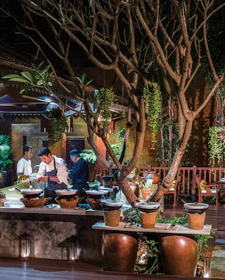 Chefs in an outdoor kitchen surrounded by trees, vines and large potted plants