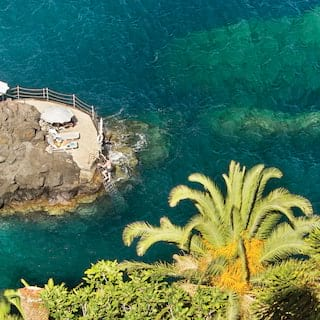 View from a clifftop garden lined with palm trees of the clear blue ocean below