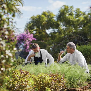 Two chefs in chef whites inhaling the scent of fresh herbs plucked from gardens