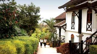 Hotel villas descending down a hill with lush jungle gardens