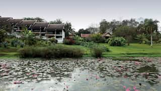 View from across a lily pond of hotel villas and lush oriental gardens