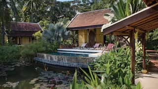 A thatched hut beyond sunbeds and pool with a lily pond in front