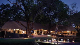 Lamplit tented safari lodge glowing under a night sky among tall trees