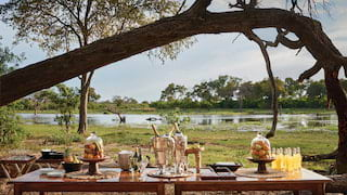Banquet table with champagne overlooking a savannah watering hole