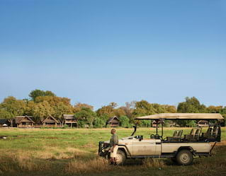 Safari Game Drives