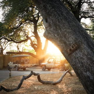 Two safari rovers parked outside a luxurious lodge with sunlight bursting through a tree