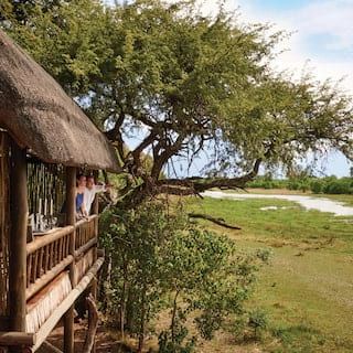 Thatched treehouse game hide overlooking the Moremi Reserve savannah