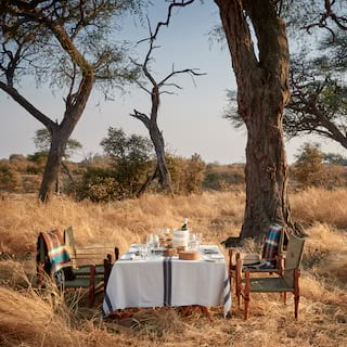 Formal table with linen tablecloth and lunch dishes under a tree in grasslands