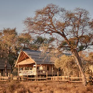 Thatch-roofed wooden safari lodge set among trees and shrubs in the savannah