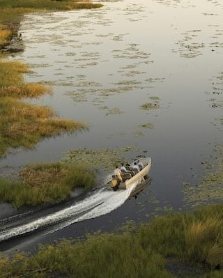 Aerial view of a motorised safari boat zipping across a river delta