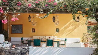 Restaurant terrace with a yellow wall under a stunning vine coated pergola