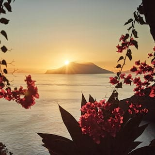 View through palms and pink flower foliage at sunset with an island beyond