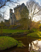 Blarney Castle by train