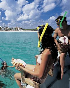 Nadar entre delfines en Cancún