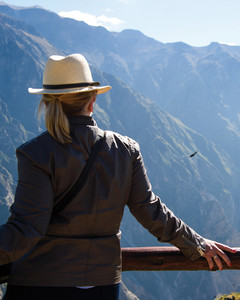 Bird watching Colca Canyon