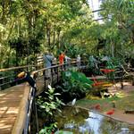 Honeymoon Resorts in Brazil