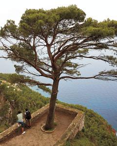 Deia Tours, Treks Majorca