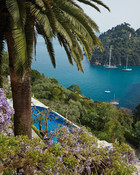 Luxury Hotel Packages in Portofino